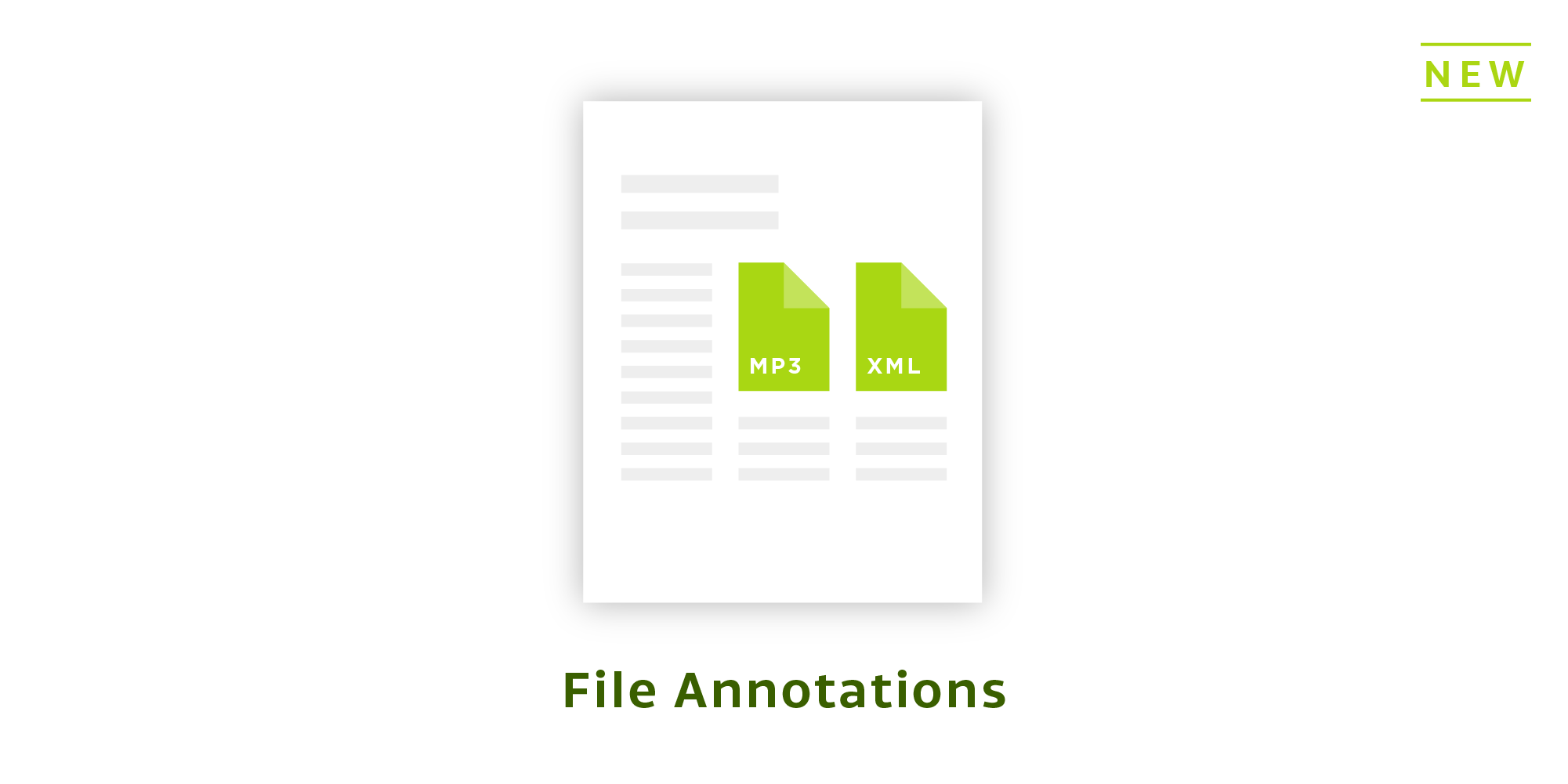 File Annotations